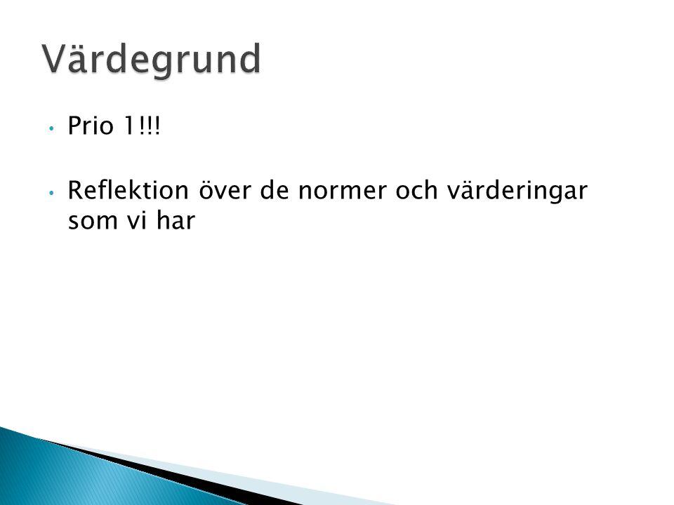 Prio 1!!! Reflektion över de normer och värderingar som vi har