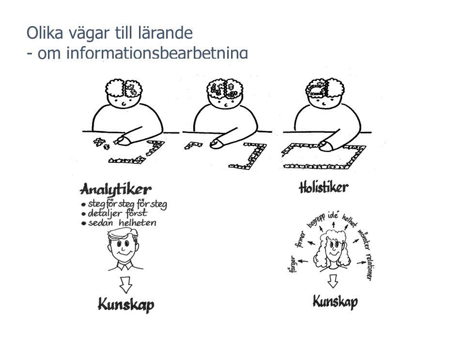 Olika vägar till lärande - om informationsbearbetning