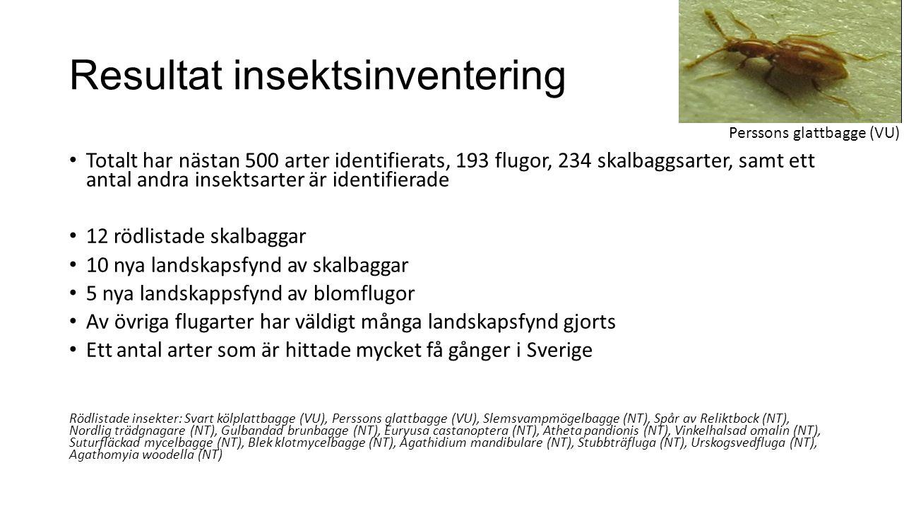 Resultat insektsinventering Totalt har nästan 500 arter identifierats, 193 flugor, 234 skalbaggsarter, samt ett antal andra insektsarter är identifierade 12 rödlistade skalbaggar 10 nya landskapsfynd av skalbaggar 5 nya landskappsfynd av blomflugor Av övriga flugarter har väldigt många landskapsfynd gjorts Ett antal arter som är hittade mycket få gånger i Sverige Rödlistade insekter: Svart kölplattbagge (VU), Perssons glattbagge (VU), Slemsvampmögelbagge (NT), Spår av Reliktbock (NT), Nordlig trädgnagare (NT), Gulbandad brunbagge (NT), Euryusa castanoptera (NT), Atheta pandionis (NT), Vinkelhalsad omalin (NT), Suturfläckad mycelbagge (NT), Blek klotmycelbagge (NT), Agathidium mandibulare (NT), Stubbträfluga (NT), Urskogsvedfluga (NT), Agathomyia woodella (NT) Perssons glattbagge (VU)