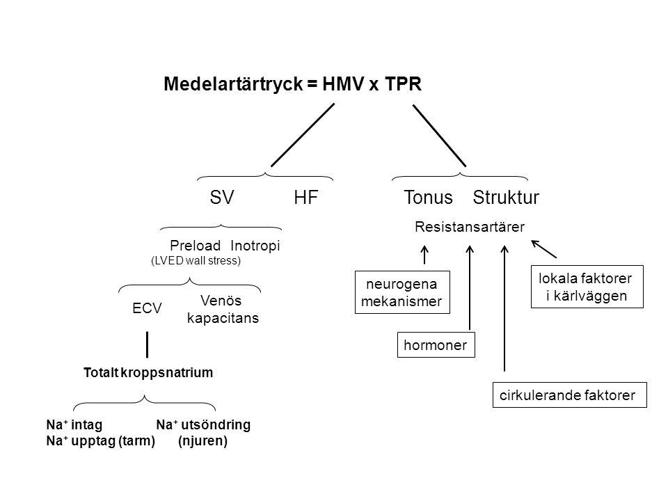 Salt (NaCl)-belastning av salt-känslig individ (tidigt) Medelartärtryck ↑ = HMV ↑ x TPR SVHF Inotropi Preload (LVED wall stress) Venös kapacitans ECV Totalt kroppsnatrium Na + intag Na + upptag (tarm) Na + utsöndring (njuren) TonusStruktur Resistansartärer lokala faktorer i kärlväggen hormoner neurogena mekanismer cirkulerande faktorer