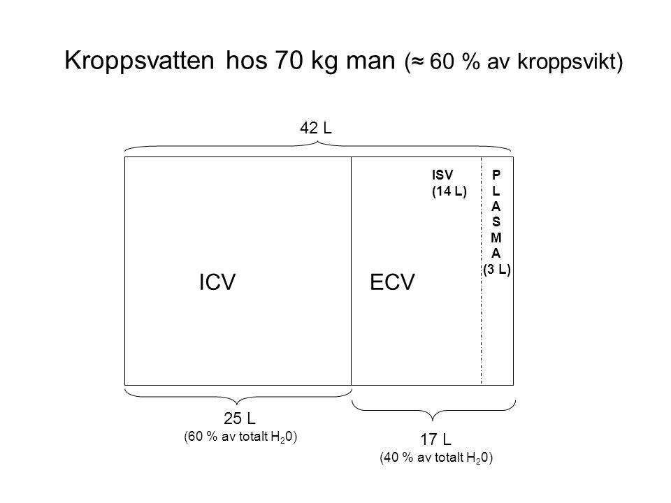 Kroppsvatten hos 70 kg man (≈ 60 % av kroppsvikt) ICVECV ISV (14 L) P L A S M A (3 L) 42 L 25 L (60 % av totalt H 2 0) 17 L (40 % av totalt H 2 0)