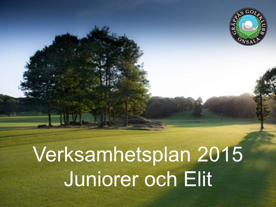 Verksamhetsplan 2015 Juniorer och Elit