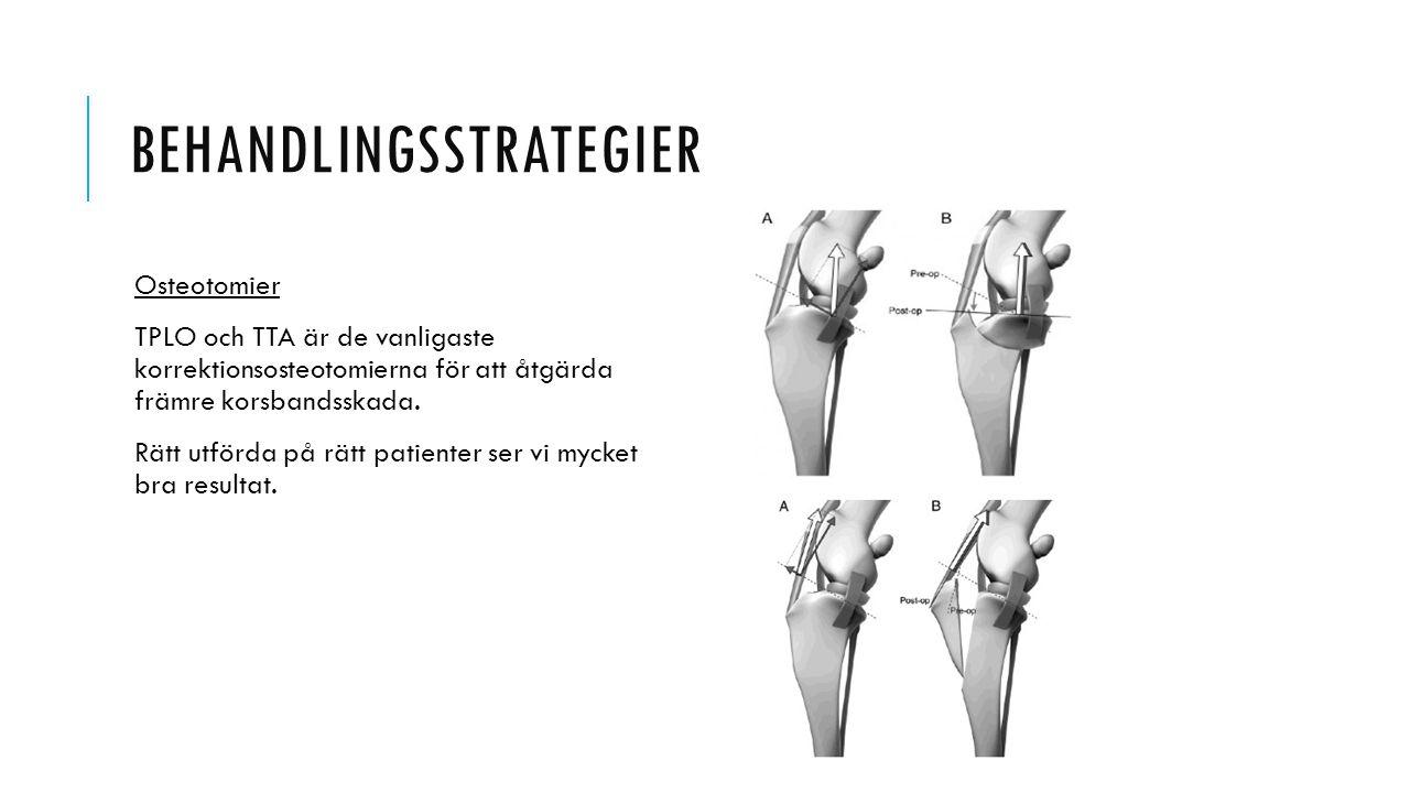 BEHANDLINGSSTRATEGIER Osteotomier TPLO och TTA är de vanligaste korrektionsosteotomierna för att åtgärda främre korsbandsskada. Rätt utförda på rätt p