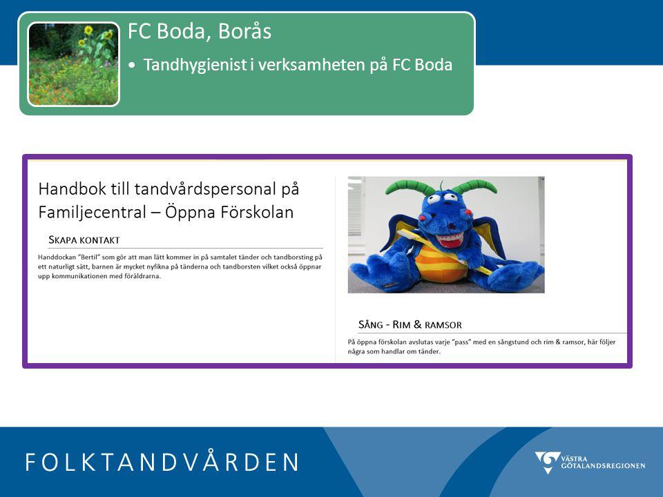 FC Boda, Borås Tandhygienist i verksamheten på FC Boda