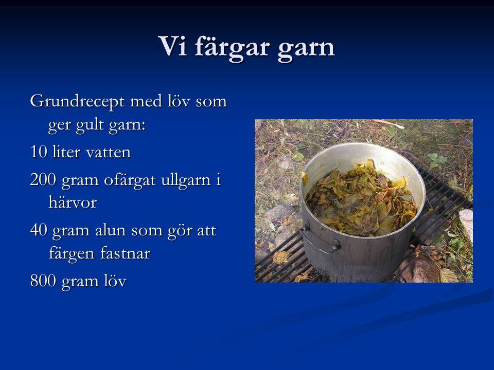 Vi färgar garn Grundrecept med löv som ger gult garn: 10 liter vatten 200 gram ofärgat ullgarn i härvor 40 gram alun som gör att färgen fastnar 800 gr