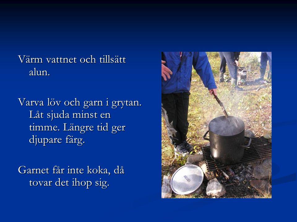 Värm vattnet och tillsätt alun. Varva löv och garn i grytan. Låt sjuda minst en timme. Längre tid ger djupare färg. Garnet får inte koka, då tovar det