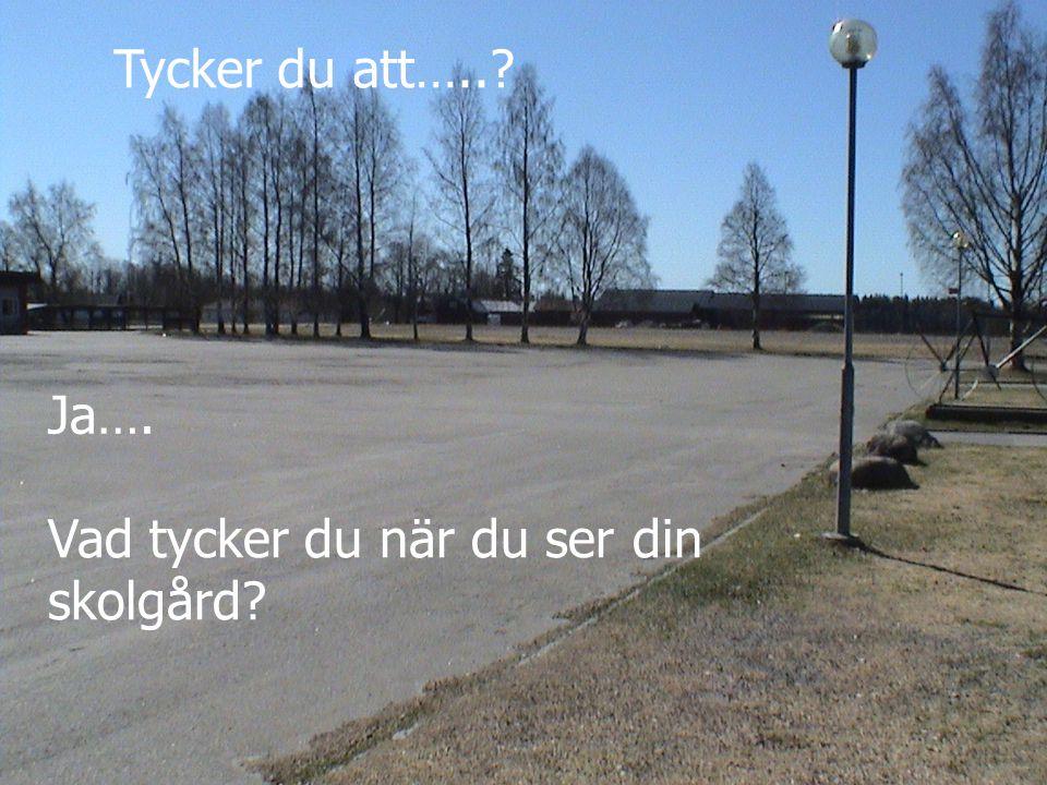 Tycker du att…..? Vad tycker du när du ser din skolgård? Ja….