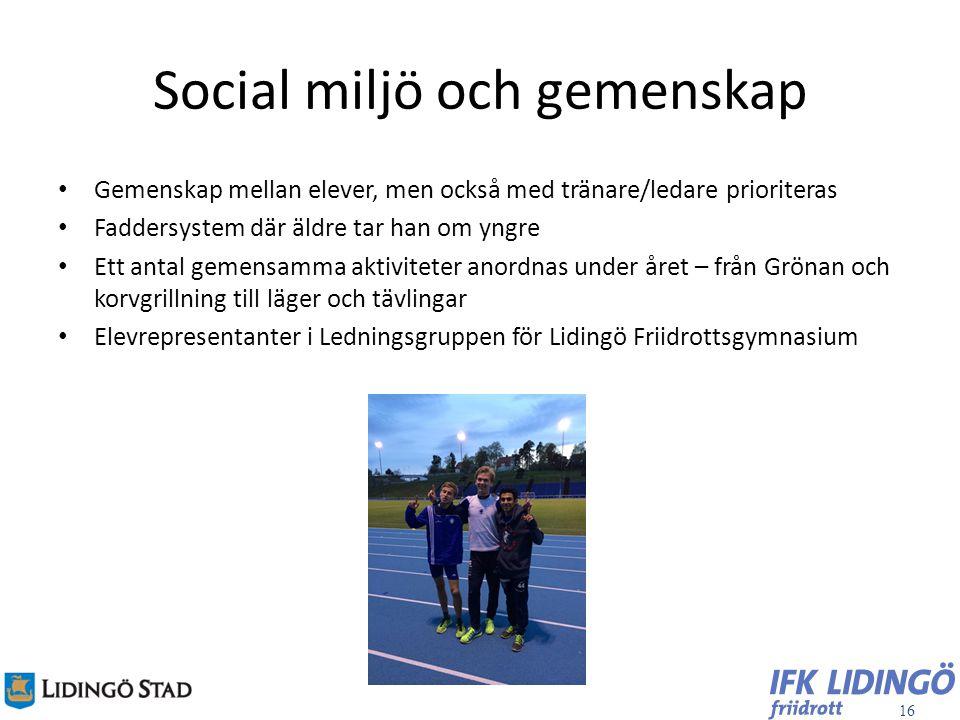 16 Social miljö och gemenskap Gemenskap mellan elever, men också med tränare/ledare prioriteras Faddersystem där äldre tar han om yngre Ett antal geme
