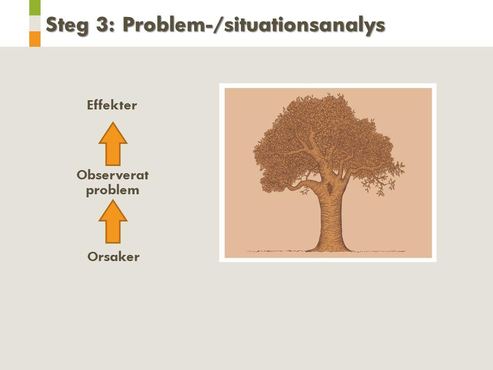 Orsaker Observerat problem Effekter Steg 3: Problem-/situationsanalys