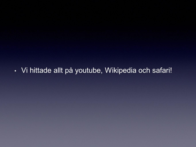 Vi hittade allt på youtube, Wikipedia och safari!