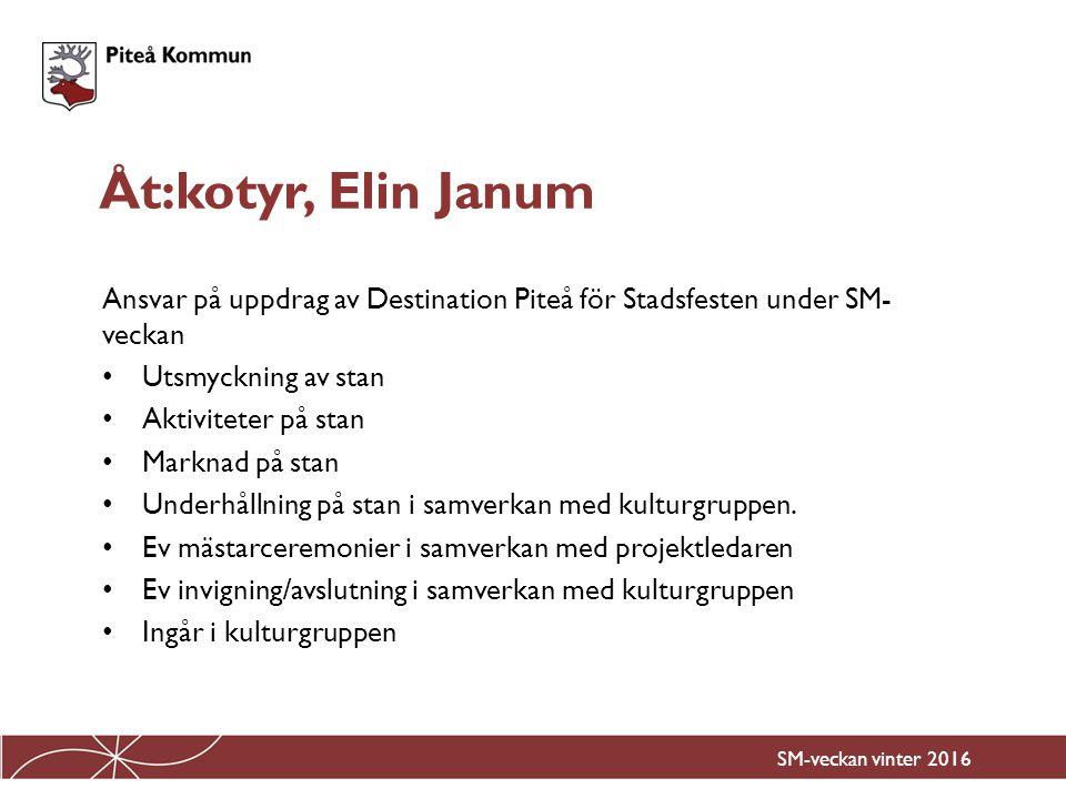 Ansvar på uppdrag av Destination Piteå för Stadsfesten under SM- veckan Utsmyckning av stan Aktiviteter på stan Marknad på stan Underhållning på stan