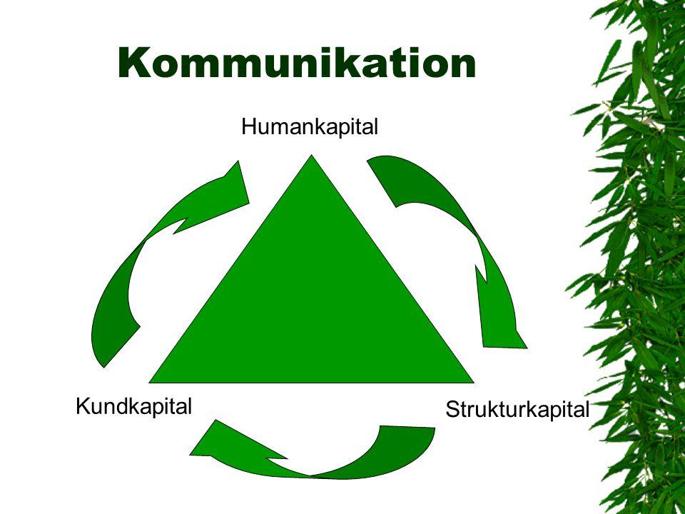Kommunikation Humankapital Strukturkapital Kundkapital