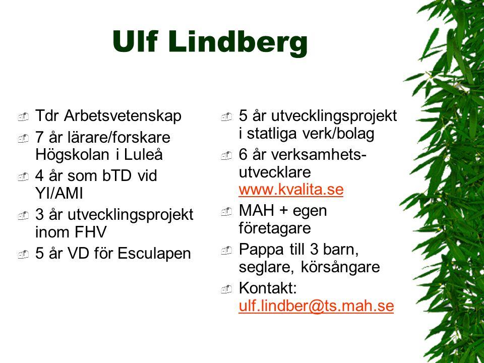 Ulf Lindberg  Tdr Arbetsvetenskap  7 år lärare/forskare Högskolan i Luleå  4 år som bTD vid YI/AMI  3 år utvecklingsprojekt inom FHV  5 år VD för
