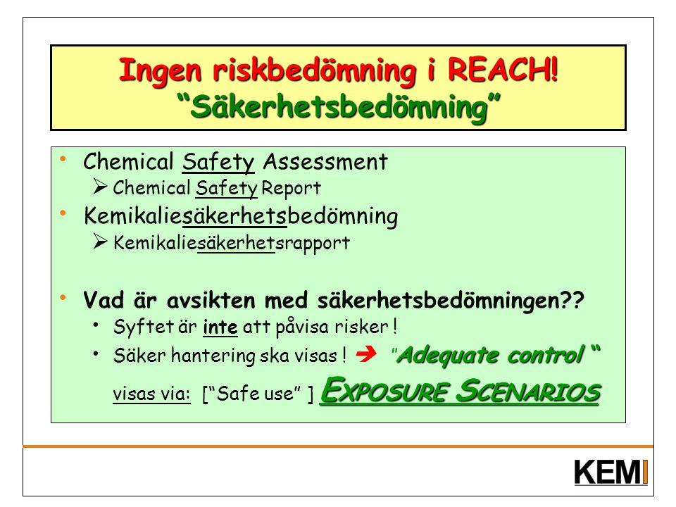 "Ingen riskbedömning i REACH! ""Säkerhetsbedömning"" Chemical Safety Assessment  Chemical Safety Report Kemikaliesäkerhetsbedömning  Kemikaliesäkerhets"