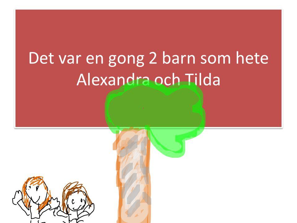 Det var en gong 2 barn som hete Alexandra och Tilda