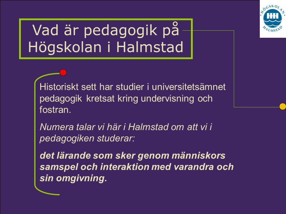 Historiskt sett har studier i universitetsämnet pedagogik kretsat kring undervisning och fostran. Numera talar vi här i Halmstad om att vi i pedagogik