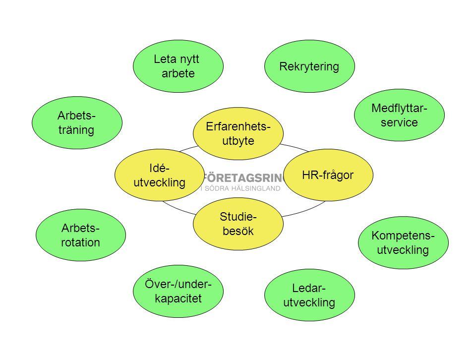 Kompetens- utveckling Över-/under- kapacitet Ledar- utveckling Rekrytering Arbets- rotation Arbets- träning Medflyttar- service Idé- utveckling Erfarenhets- utbyte HR-frågor Studie- besök Leta nytt arbete