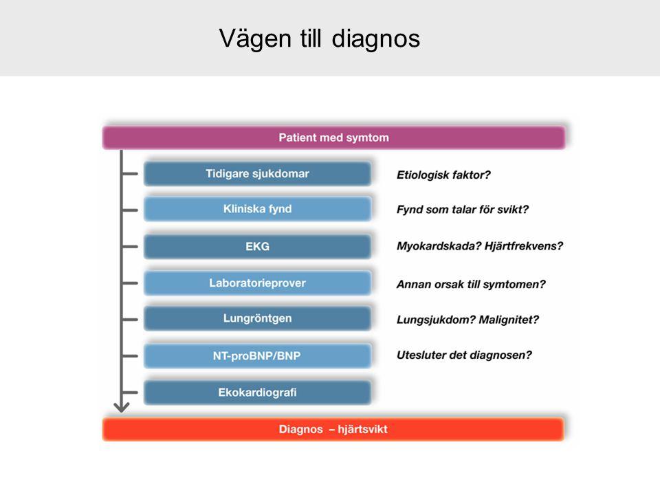 Vägen till diagnos