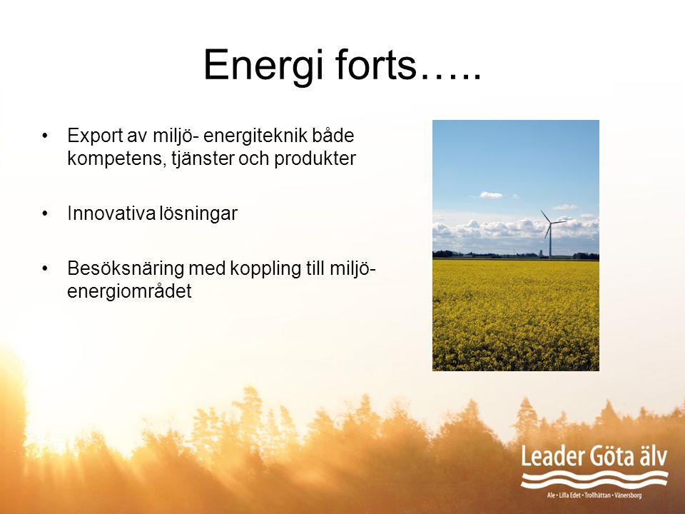 Energi forts….. Export av miljö- energiteknik både kompetens, tjänster och produkter Innovativa lösningar Besöksnäring med koppling till miljö- energi