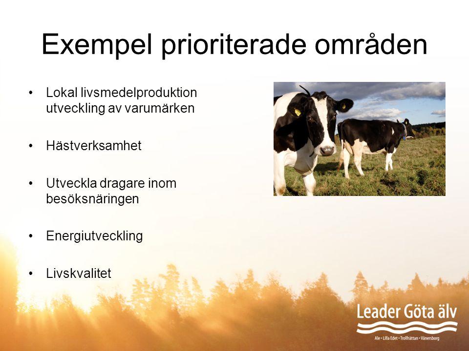 Exempel prioriterade områden Lokal livsmedelproduktion utveckling av varumärken Hästverksamhet Utveckla dragare inom besöksnäringen Energiutveckling L