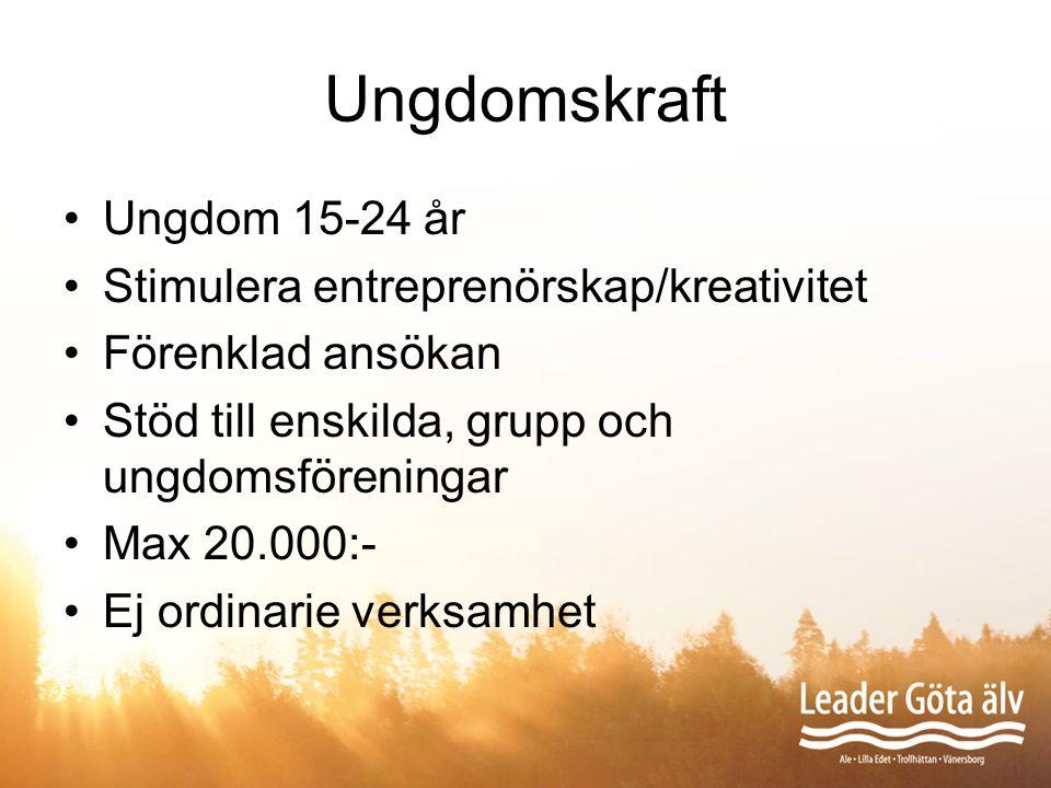 Ungdomskraft Ungdom 15-24 år Stimulera entreprenörskap/kreativitet Förenklad ansökan Stöd till enskilda, grupp och ungdomsföreningar Max 20.000:- Ej o