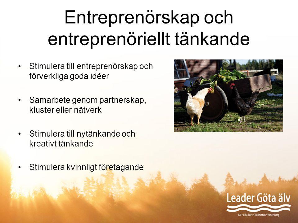 Entreprenörskap och entreprenöriellt tänkande Stimulera till entreprenörskap och förverkliga goda idéer Samarbete genom partnerskap, kluster eller nät