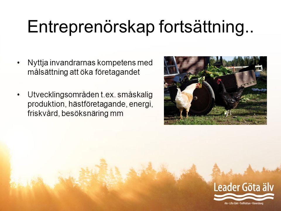 Entreprenörskap fortsättning.. Nyttja invandrarnas kompetens med målsättning att öka företagandet Utvecklingsområden t.ex. småskalig produktion, hästf