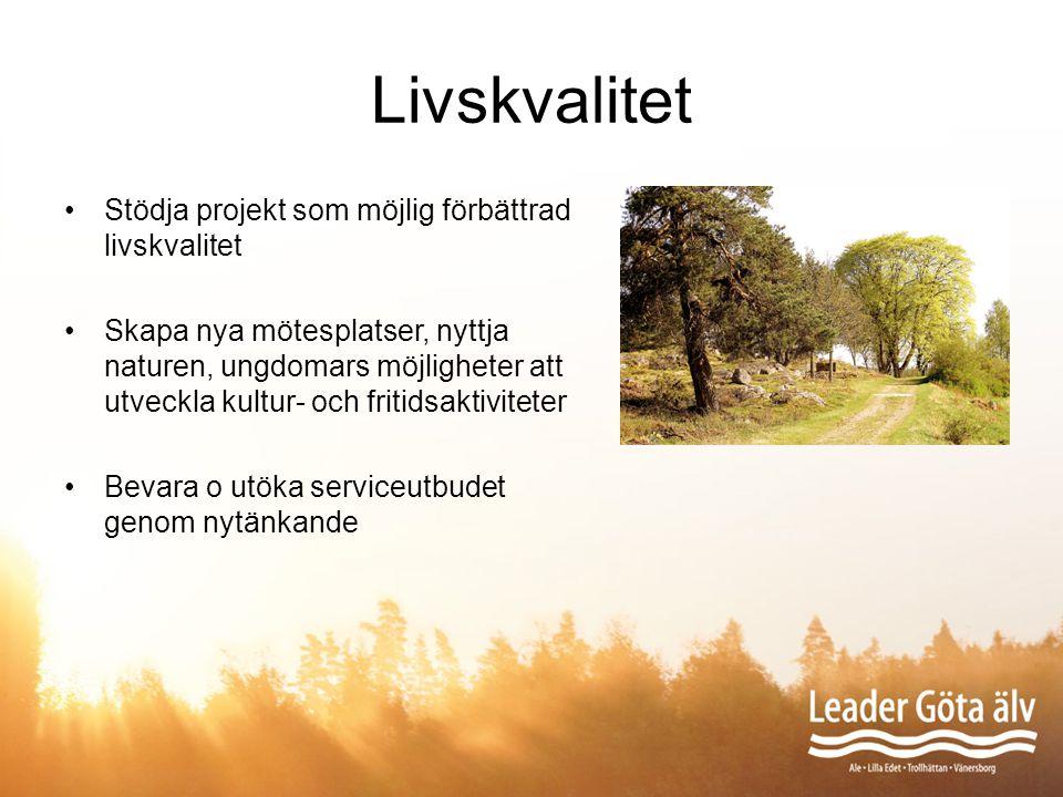 Livskvalitet Stödja projekt som möjlig förbättrad livskvalitet Skapa nya mötesplatser, nyttja naturen, ungdomars möjligheter att utveckla kultur- och