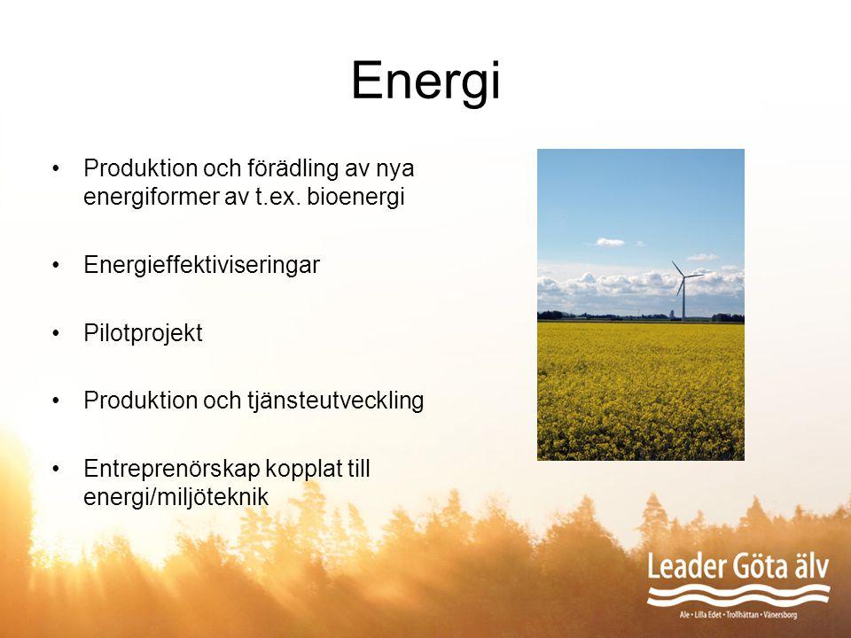 Energi Produktion och förädling av nya energiformer av t.ex. bioenergi Energieffektiviseringar Pilotprojekt Produktion och tjänsteutveckling Entrepren