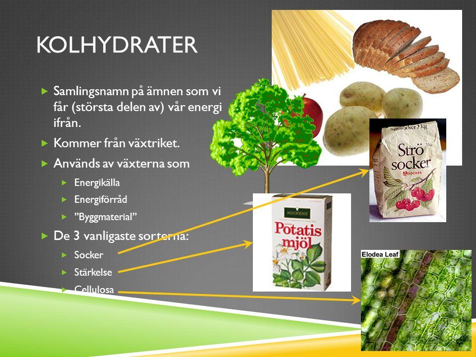 FETTER  Finns i alla levande celler  15-20% av vår kroppsvikt  40% av vår energi får vi genom fettrik mat  Kan vara fasta eller flytande (olja)