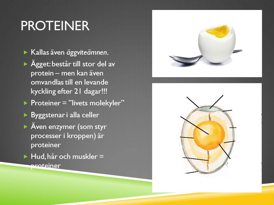 PROTEINER  Kallas även äggviteämnen.