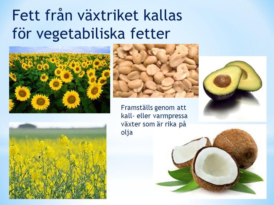 Fett från växtriket kallas för vegetabiliska fetter Framställs genom att kall- eller varmpressa växter som är rika på olja