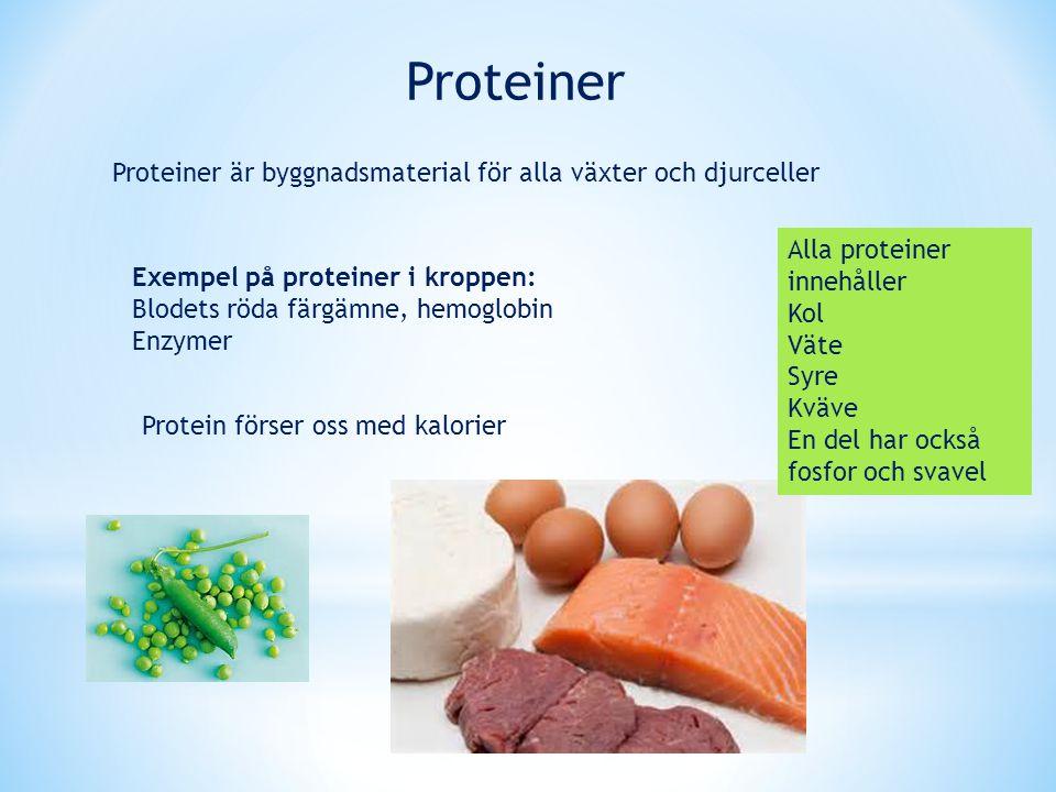 Proteiner Protein förser oss med kalorier Proteiner är byggnadsmaterial för alla växter och djurceller Exempel på proteiner i kroppen: Blodets röda fä