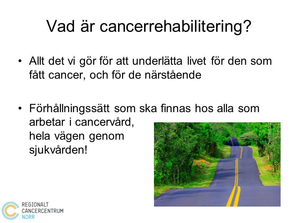 Vad är cancerrehabilitering? Allt det vi gör för att underlätta livet för den som fått cancer, och för de närstående Förhållningssätt som ska finnas h