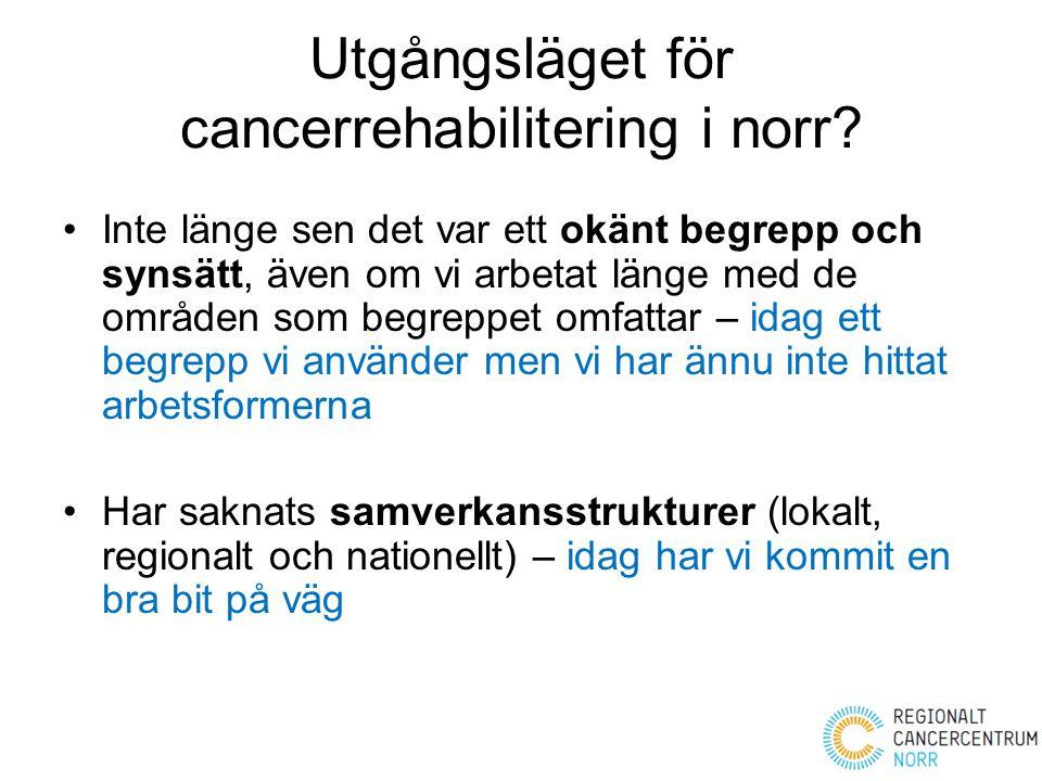 Utgångsläget för cancerrehabilitering i norr? Inte länge sen det var ett okänt begrepp och synsätt, även om vi arbetat länge med de områden som begrep