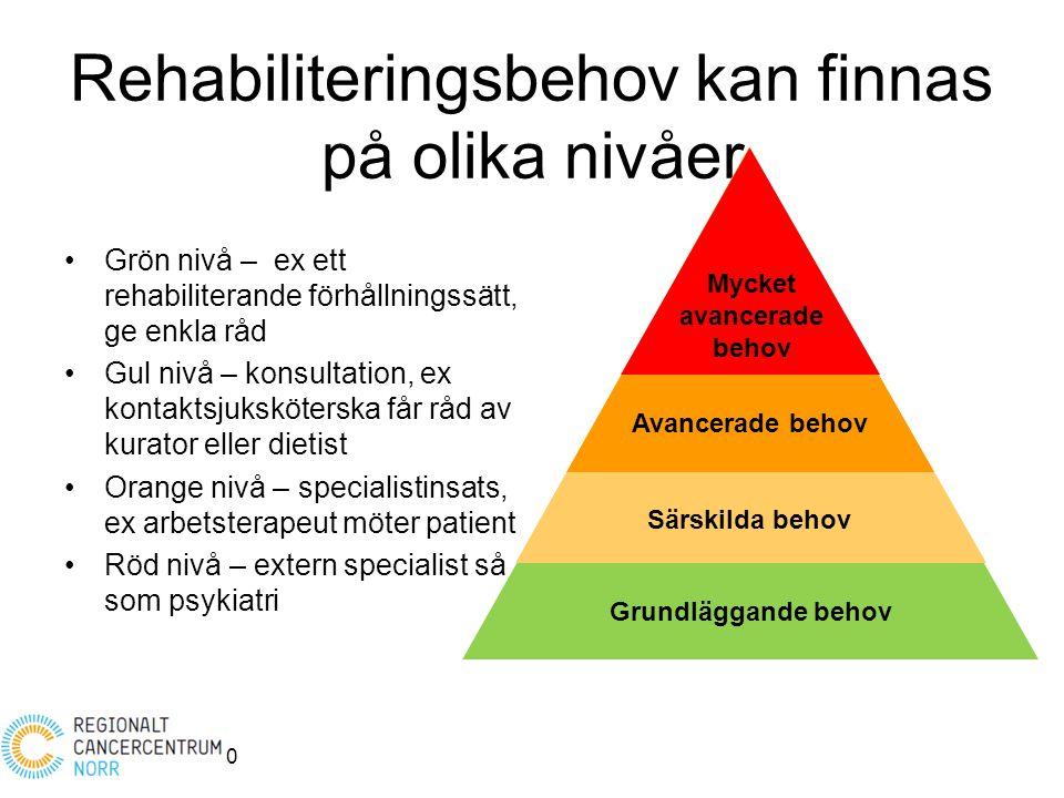 Rehabiliteringsbehov kan finnas på olika nivåer Grön nivå – ex ett rehabiliterande förhållningssätt, ge enkla råd Gul nivå – konsultation, ex kontakts