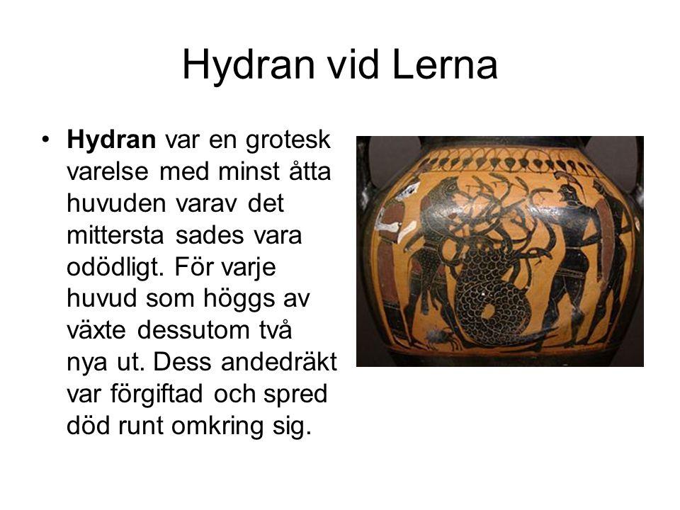 Hydran vid Lerna Hydran var en grotesk varelse med minst åtta huvuden varav det mittersta sades vara odödligt.