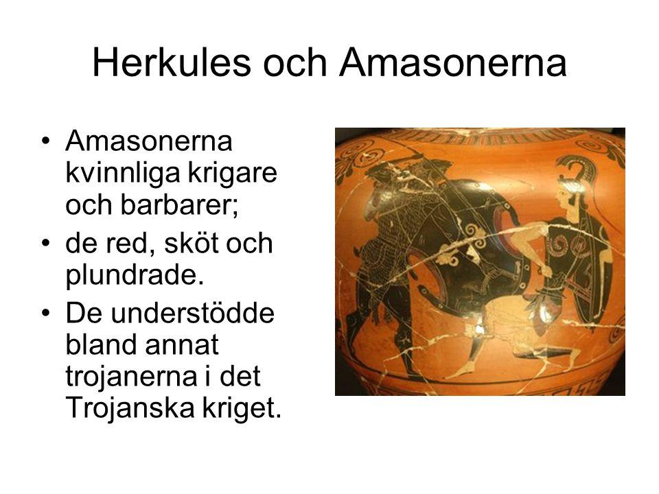 Herkules och Amasonerna Amasonerna kvinnliga krigare och barbarer; de red, sköt och plundrade.