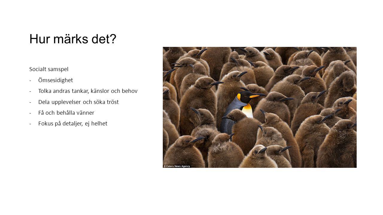 Hur märks det? Socialt samspel -Ömsesidighet -Tolka andras tankar, känslor och behov -Dela upplevelser och söka tröst -Få och behålla vänner -Fokus på