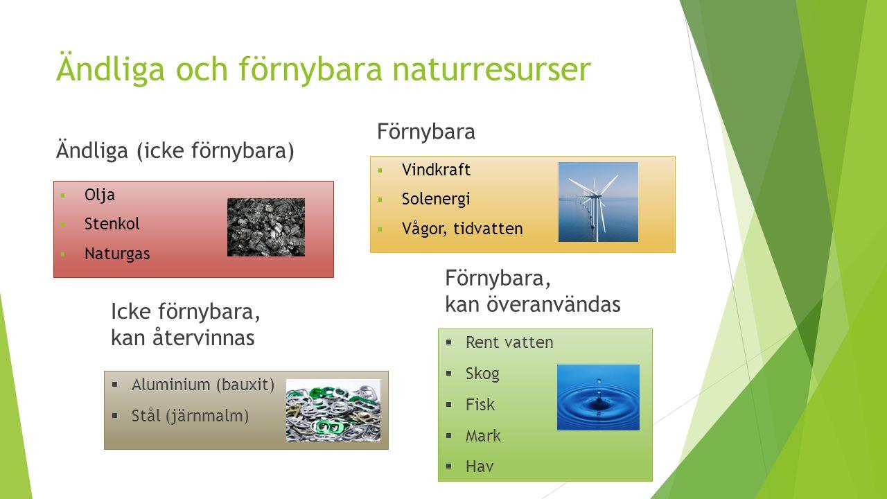 Ändliga och förnybara naturresurser Ändliga (icke förnybara)  Olja  Stenkol  Naturgas Förnybara  Vindkraft  Solenergi  Vågor, tidvatten Icke för
