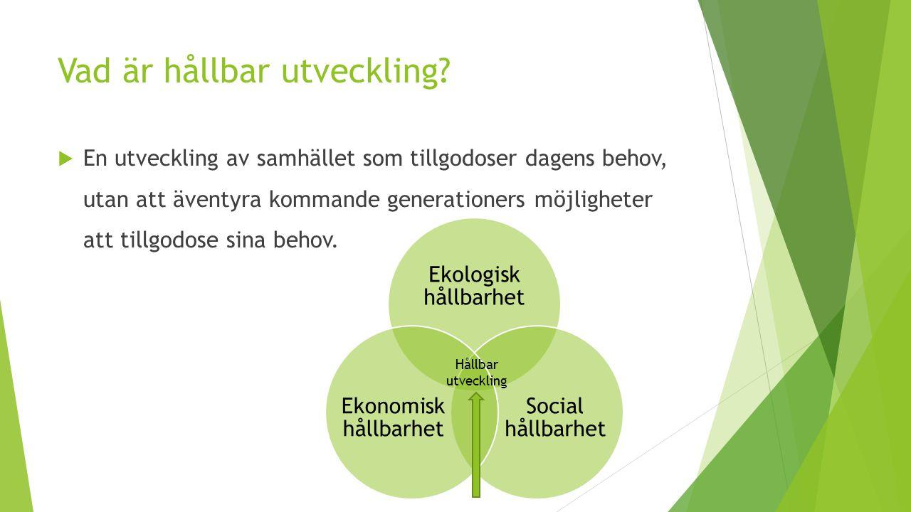 Ekologisk, ekonomisk och social hållbarhet i Hököpings kommun