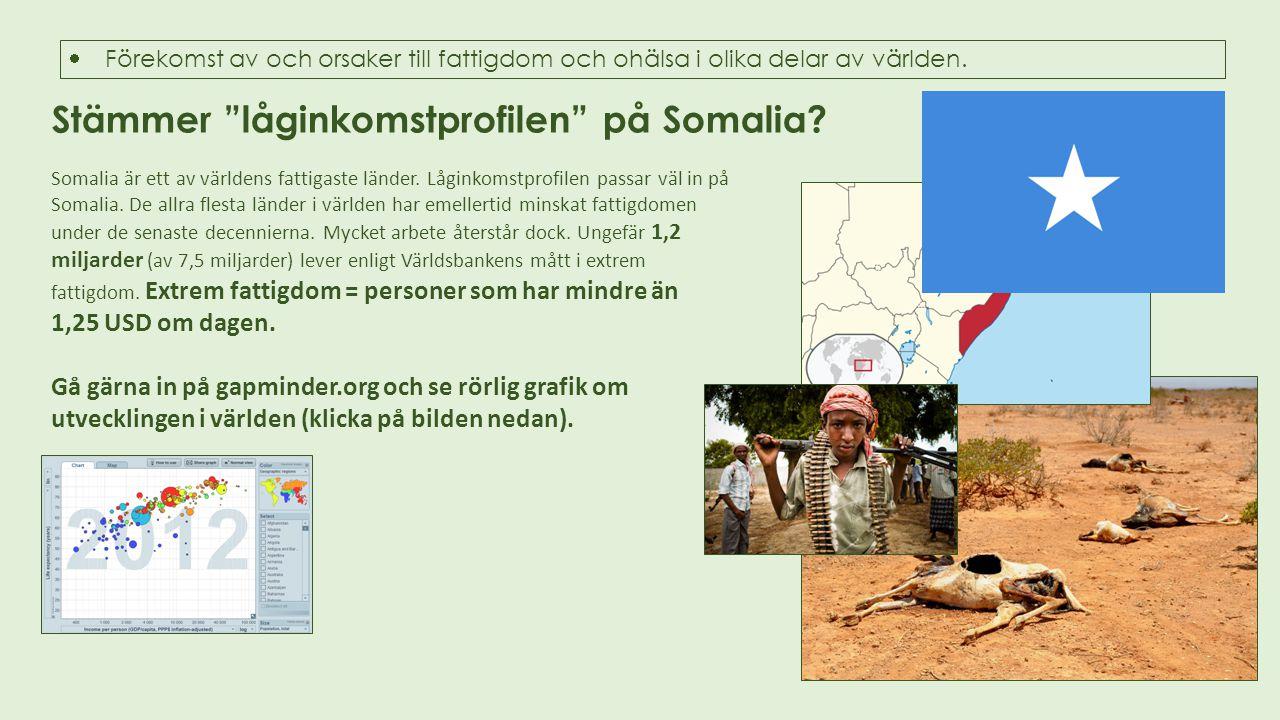 """Stämmer """"låginkomstprofilen"""" på Somalia? Somalia är ett av världens fattigaste länder. Låginkomstprofilen passar väl in på Somalia. De allra flesta lä"""
