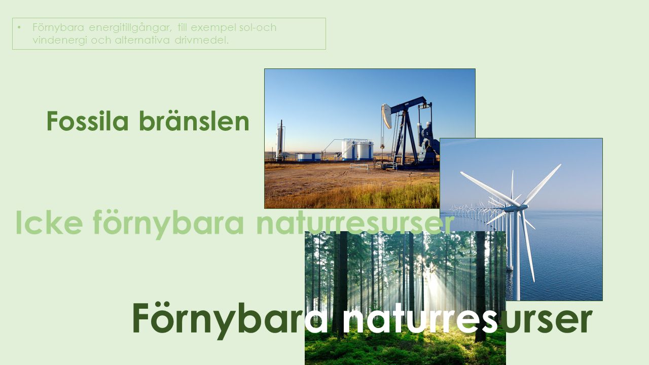 Förnybara energitillgångar, till exempel sol-och vindenergi och alternativa drivmedel. Fossila bränslen Icke förnybara naturresurser Förnybara naturre