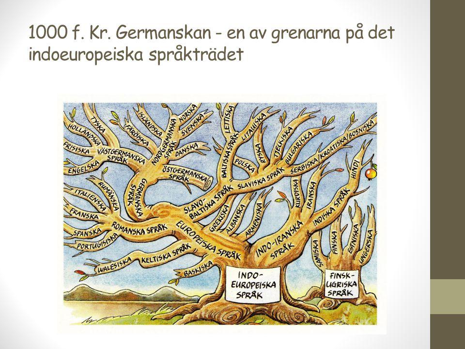 År 200-800 Urnordiskan Ett gemensamt nordiskt språk fram till vikingatiden Utmärkande: Runor 24 stycken (danska el normala runor) Runstenar och inristningar i trä Källa: Gallehushornet från 400-talet.