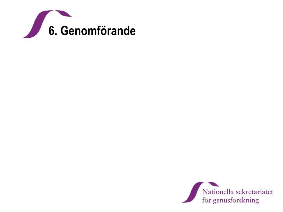 6. Genomförande