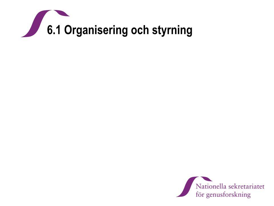 6.1 Organisering och styrning