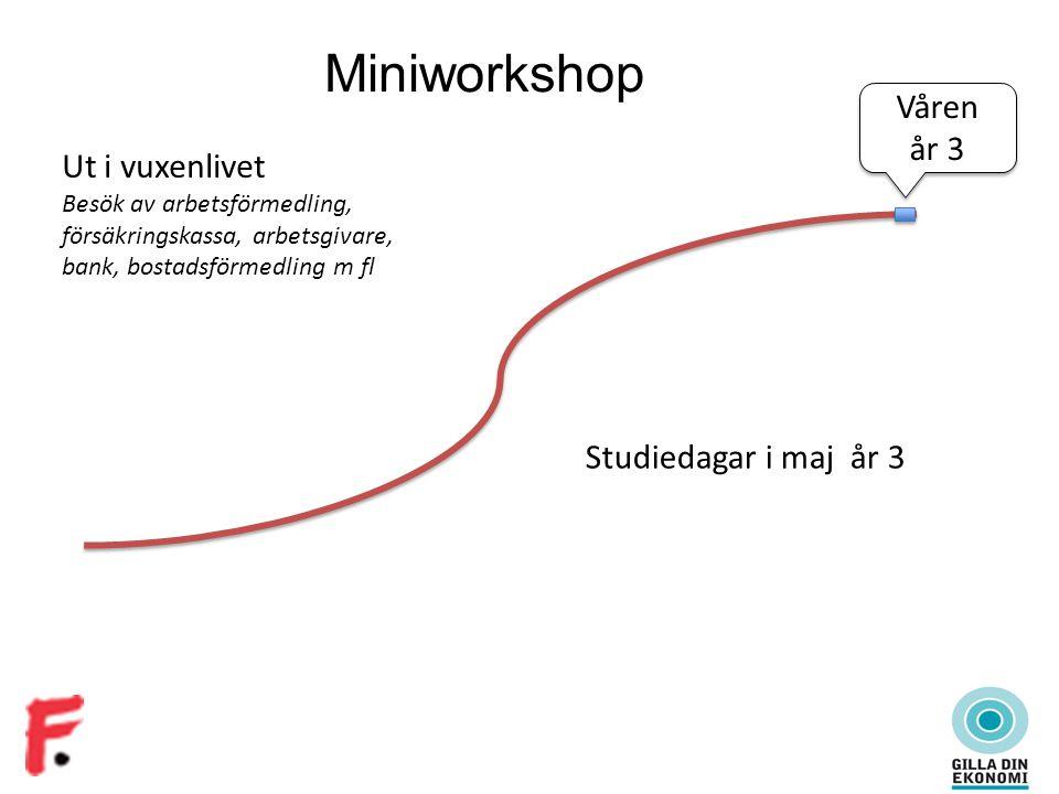 Miniworkshop Ut i vuxenlivet Besök av arbetsförmedling, försäkringskassa, arbetsgivare, bank, bostadsförmedling m fl Studiedagar i maj år 3 Våren år 3