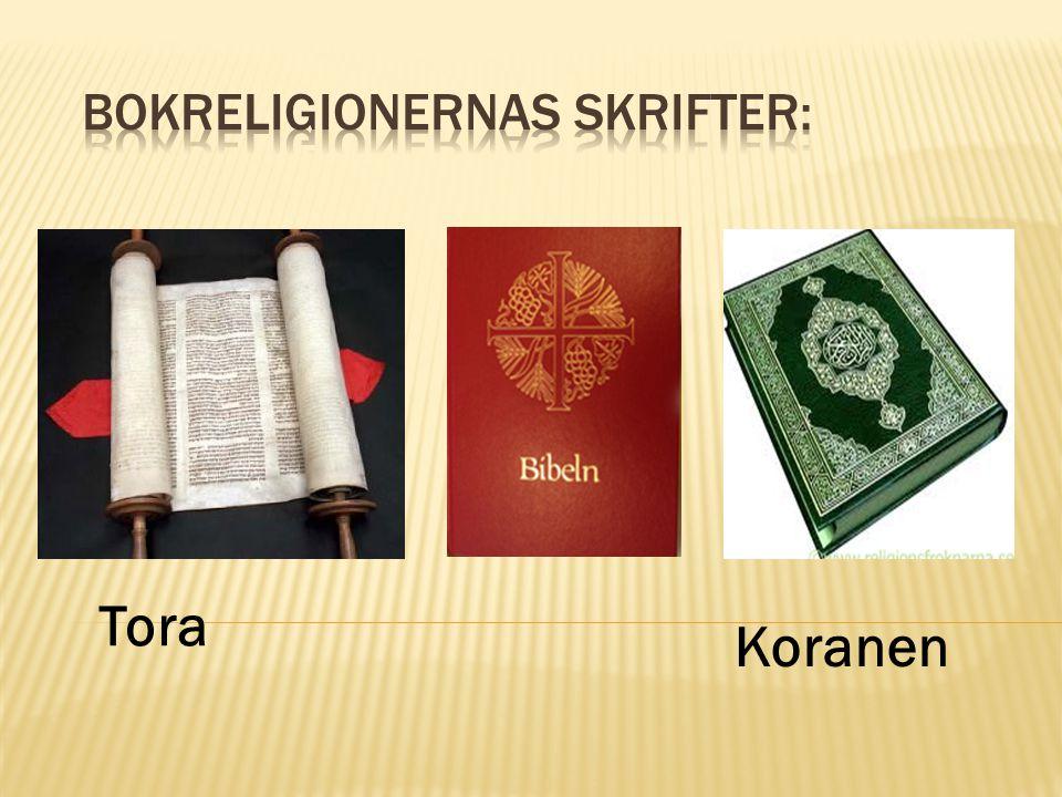 Tora Koranen
