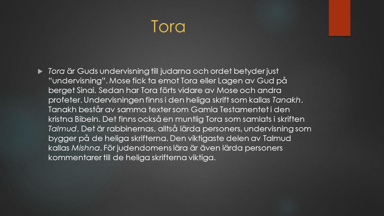 """Tora  Tora är Guds undervisning till judarna och ordet betyder just """"undervisning"""". Mose fick ta emot Tora eller Lagen av Gud på berget Sinai. Sedan"""