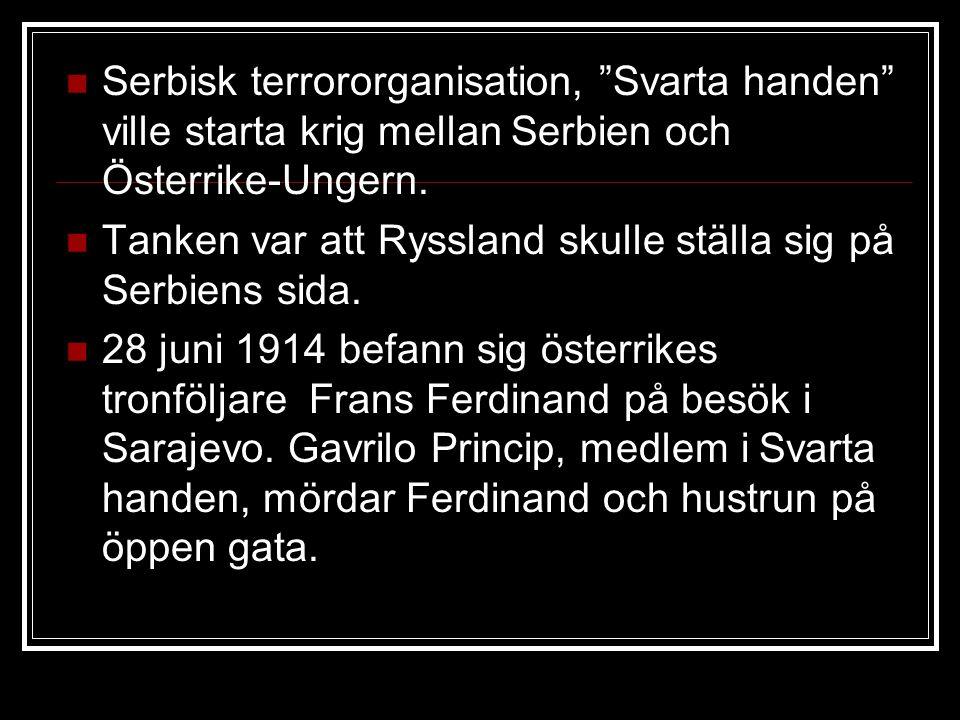 """Serbisk terrororganisation, """"Svarta handen"""" ville starta krig mellan Serbien och Österrike-Ungern. Tanken var att Ryssland skulle ställa sig på Serbie"""